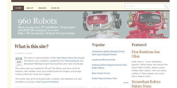 Beautiful-and-Creative-Free-Drupal-Themes-960robots