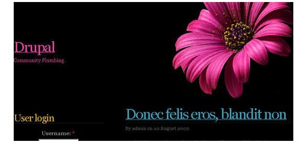 Beautiful-and-Creative-Free-Drupal-Themes-pinkflower