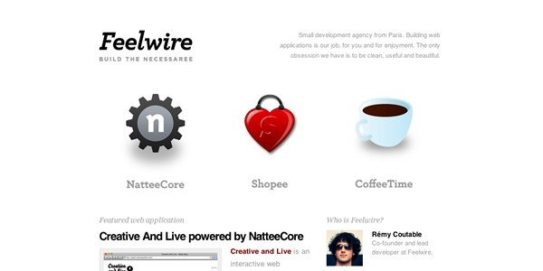 Single Page Websites-feelwire