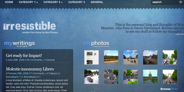 Free WordPress Video Themes-irresistible