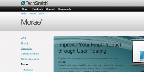Web Usability Testing Tool-morae