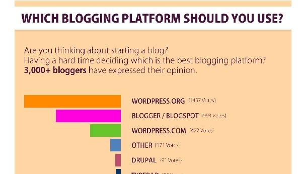 WordPress Infographics-bloggingplatform