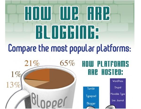 WordPress Infographics-howareweblogging