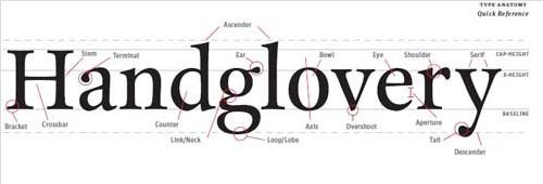 Typography eBooks-typefaceanatomy